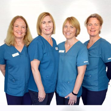 Our Nurse Team